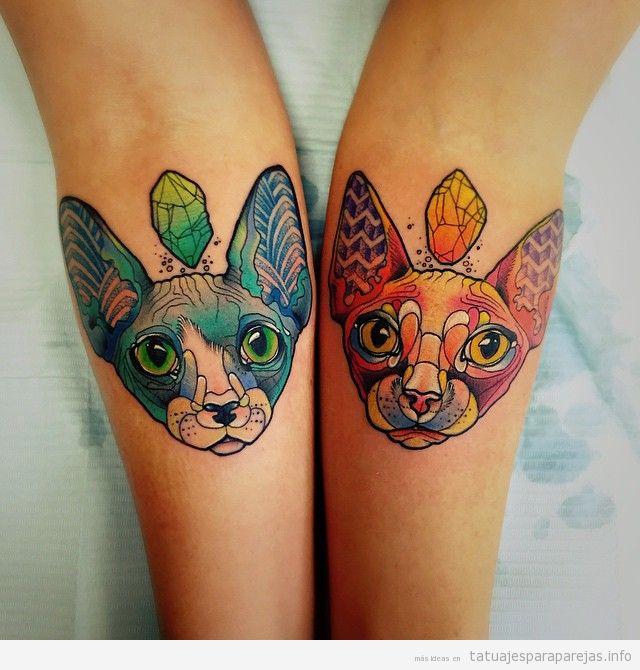 Tatuaje en pareja de gatos sphynx o esfinge
